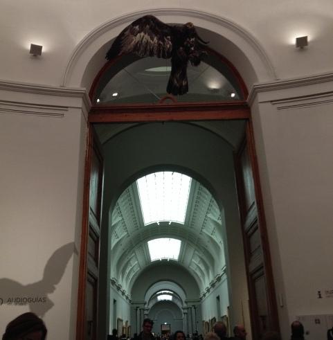 Museo del Prado - Miguel Angel Blanco - Eagle - November 2013 - Alli Burness